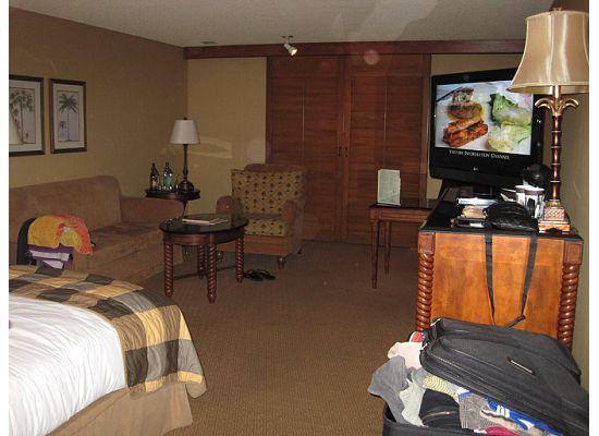 Hilton Santa Barbara Beachfront Resort: Room view 2
