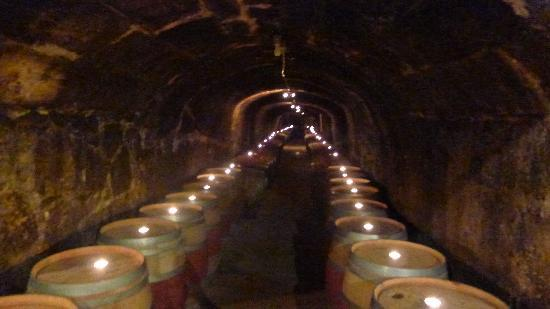 Del Dotto Vineyards & Winery: Cave full of wine barrels