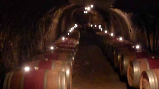 Del Dotto Vineyards & Winery: Inside the cave