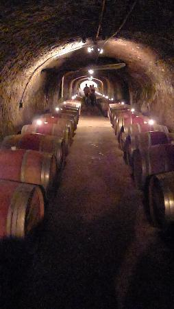 Del Dotto Vineyards & Winery: The cave