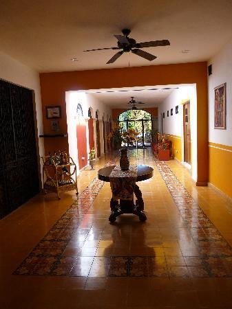 Luz En Yucatan: galeria