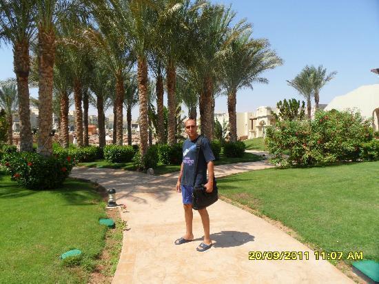 Rixos Sharm El Sheikh: Morning