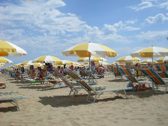 Hotel Silvana B&B: La spiaggia