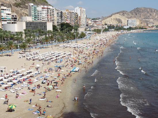 Melia Alicante Vista De La Habitacion