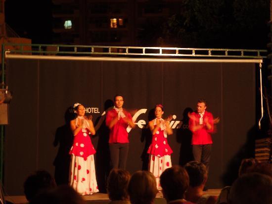 Hotel San Fermin: Animation flamenco
