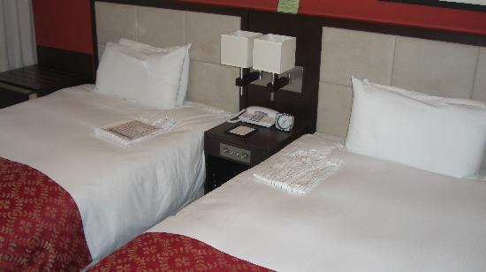 โรงแรมซันรูท พลาซ่า ชินจูกุ: HABITACIÓN 1149.