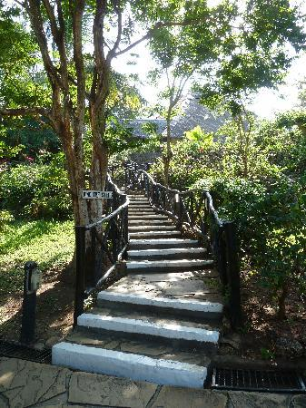 Papillon Lagoon Reef: les fameux escaliers