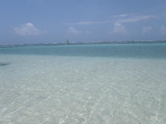 Papillon Lagoon Reef: plage