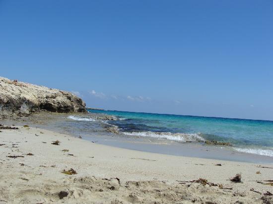 Bella Napa Bay Hotel: пляж
