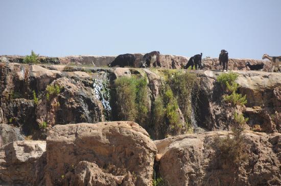 Ecotourisme et Randonnées: Les cascades