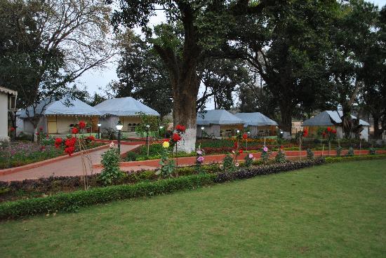 Champak Bungalow, Pachmarhi: AC Tents