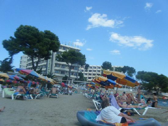 Alua Miami Ibiza: Hotel from beach