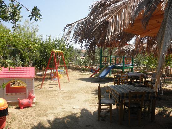 Triodi: the playground