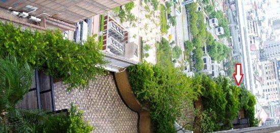 ซีซ่าร์พาร์ค โฮเต็ล: こんな木々の中にベランダがあります