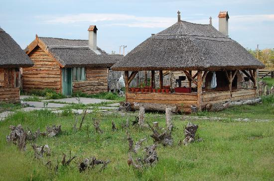 Tado Letea Pension: Garden