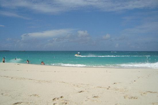 Hotel Riu Palace Paradise Island: Beach view