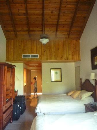 Dreams La Romana Resort & Spa: our room-std dble bed-garden view