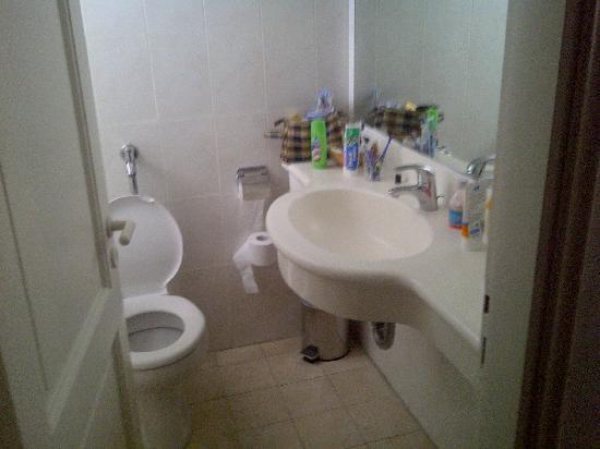 Bitzaro Palace Hotel: bathroom