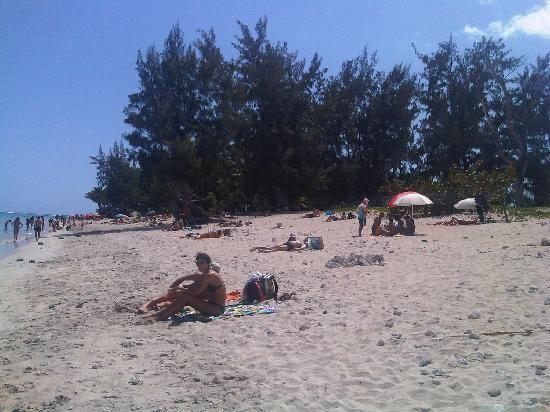 Le Nautile: la spiaggia durante una passeggiata