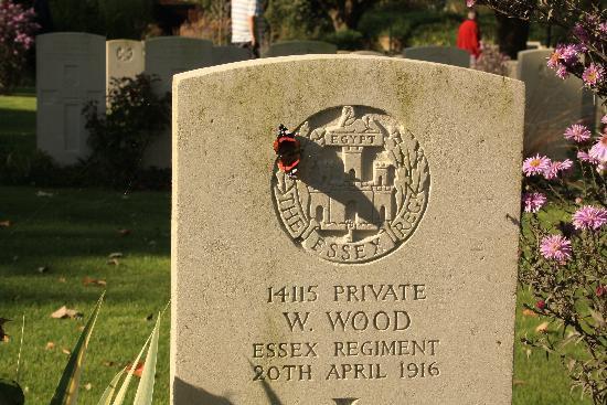 Quasimodo Tours: One of the many War Graves