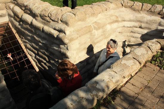 Quasimodo Tours: In the English Trenches