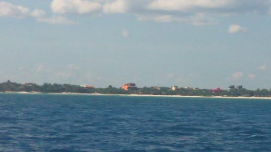 Local Quickies: View from Catamaran