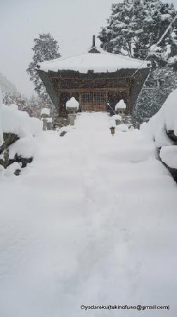 Ganshoin Temple: 雪に埋もれた御廟