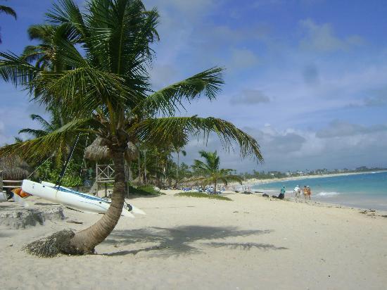 Majestic Colonial Punta Cana: Amazing  Beach
