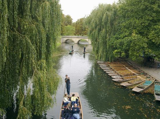 Oxbridge Tours Cambridge: beautiful cambridge!! from garret hostel bridge