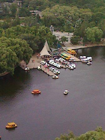 Nanhu Park: Boats on the lake (from high up on the Ferris Wheel)