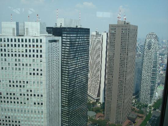 Tokyo Metropolitan Government Buildings: 展望台から眺めた回りの様子。