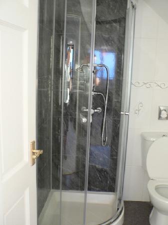Ty Gwyn Guesthouse: shower