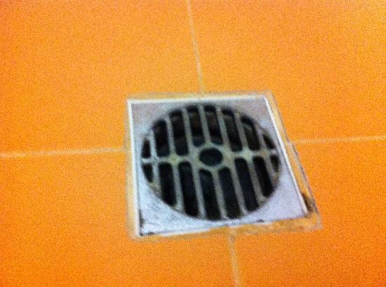 Hotel Club Astor: Lo scarico della doccia
