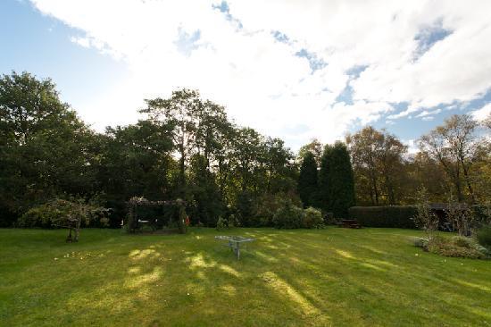 Distant Hills Guest House: Garden