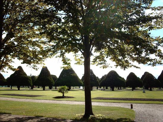 Hampton Court Palace: Giardini