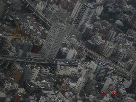 โตเกียวทาวเวอร์: View from Tokyo Tower