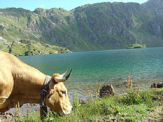 Aguas del Narcea: Excursión a los lagos de saliencia