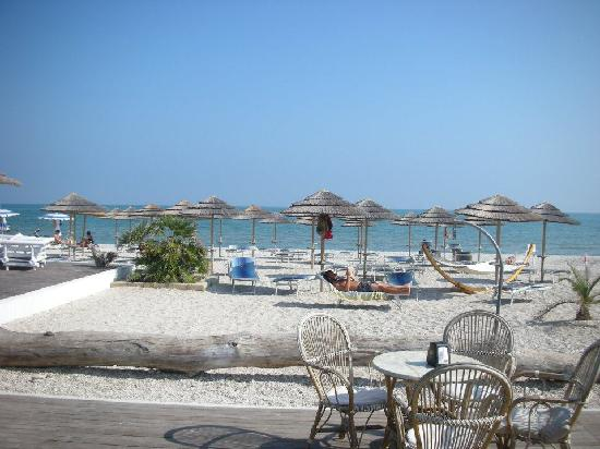 Club Meeting Hotel: Beach opposite hotel