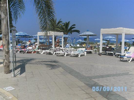 Odessa Beach Hotel: pool/ grass area