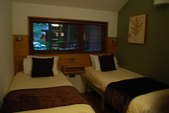 Forest Holidays Forest of Dean, Gloucestershire: Downstairs bedroom