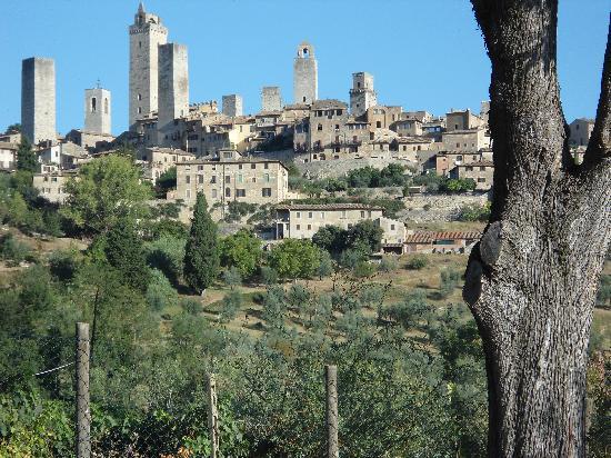 Sulle Orme di Dante Agriturismo: un quadro