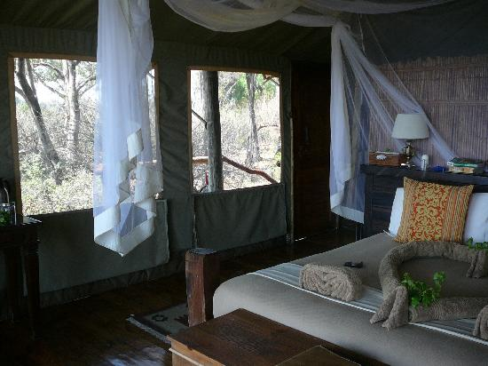 Tubu Tree Camp: Inside our tent
