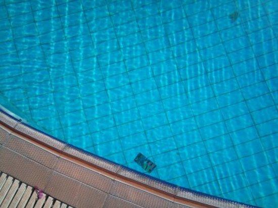 Palm Bay Hotel Studios: the pool