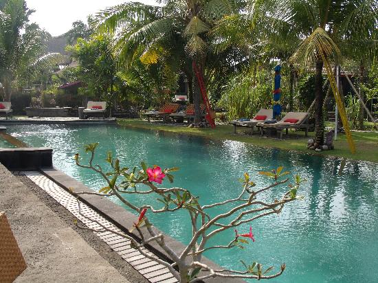 Desa Seni, A Village Resort: The wonderfully refreshing salt water pool