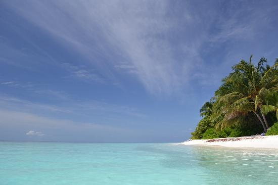 Fihalhohi Island Resort: Fihalhohi beach from the water