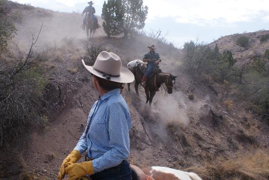 Acacia Riding Adventures: Working down...