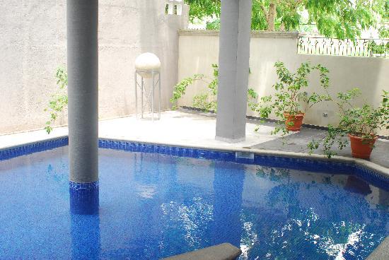 Hotel Casa del Arbol Galerias: Piscina