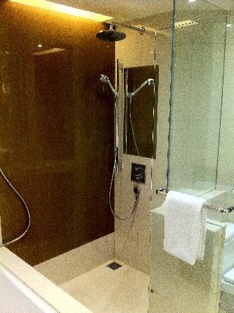 โรงแรมไฮแอทรีเจนซี่ ฮ่องกง จิมซาจุ่ย: Shower in club room