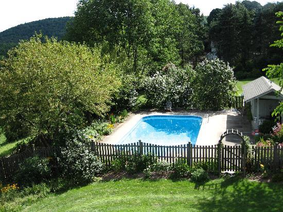 Hillside House: Swimming pool