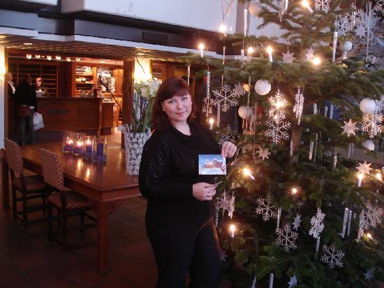 Scandic Holmenkollen Park: beautiful tree in the lobby